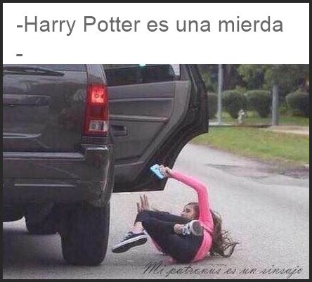 Humor Harry Potter montaje