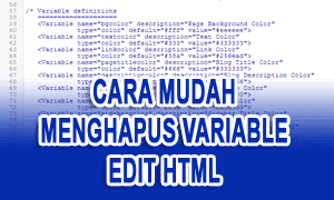 Cara Mudah Menghapus Variable Definition