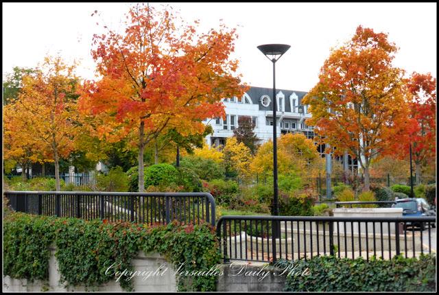 Arbres automne Porchefontaine Versailles