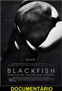 Assistir Blackfish Fúria Animal Legendado 2013
