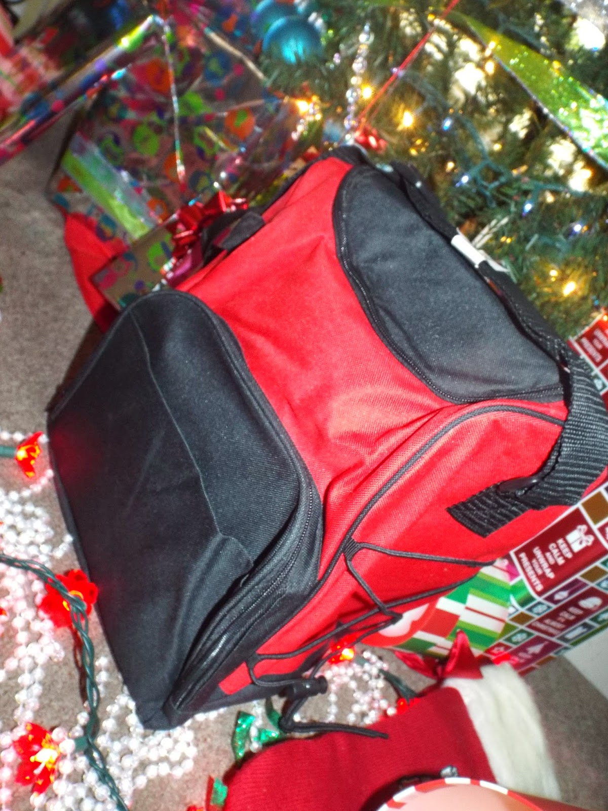 Lots of Pockets: Insulated Bag