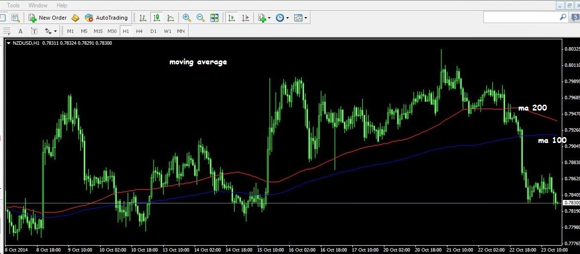 Forex on web