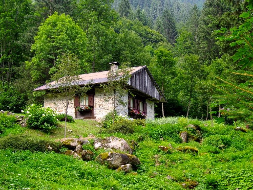 Parole tra pagine ingiallite amica solitudine for Case moderne nei boschi