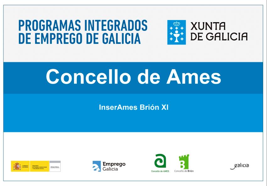 Programa Integrado InserAmes-Brión