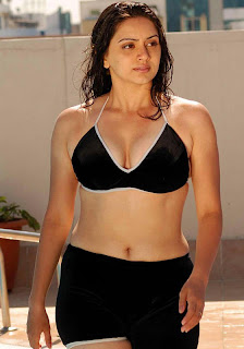 Actress Hema Malini Hot in Bikini Dress in Wet wallpapers sexy stills