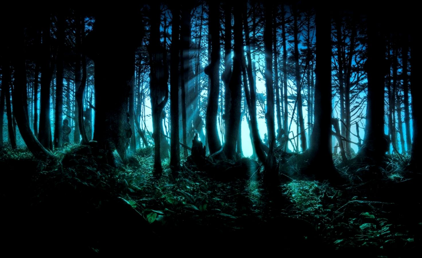Dark Forest Wallpapers – Daily Backgrounds in HD