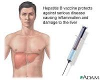 Obat Tradisional Penyakit Hepatitis B