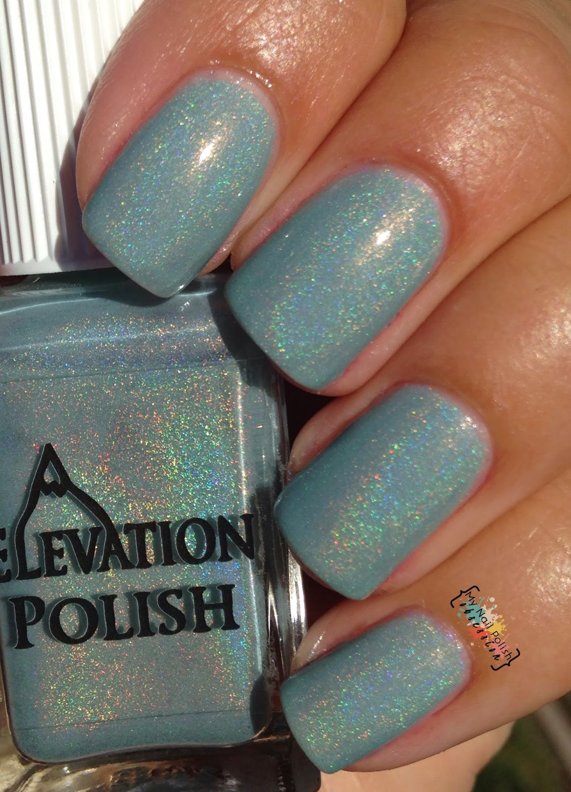 Elevation Polish Yeti Finds An Oasis