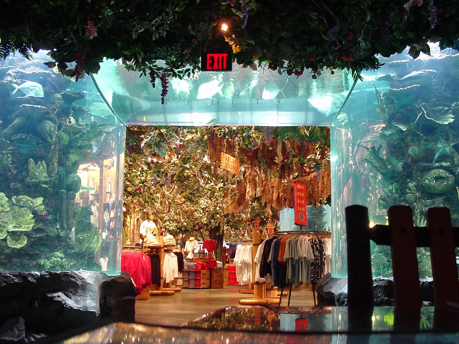 Rain Tree Cafe San Antonio
