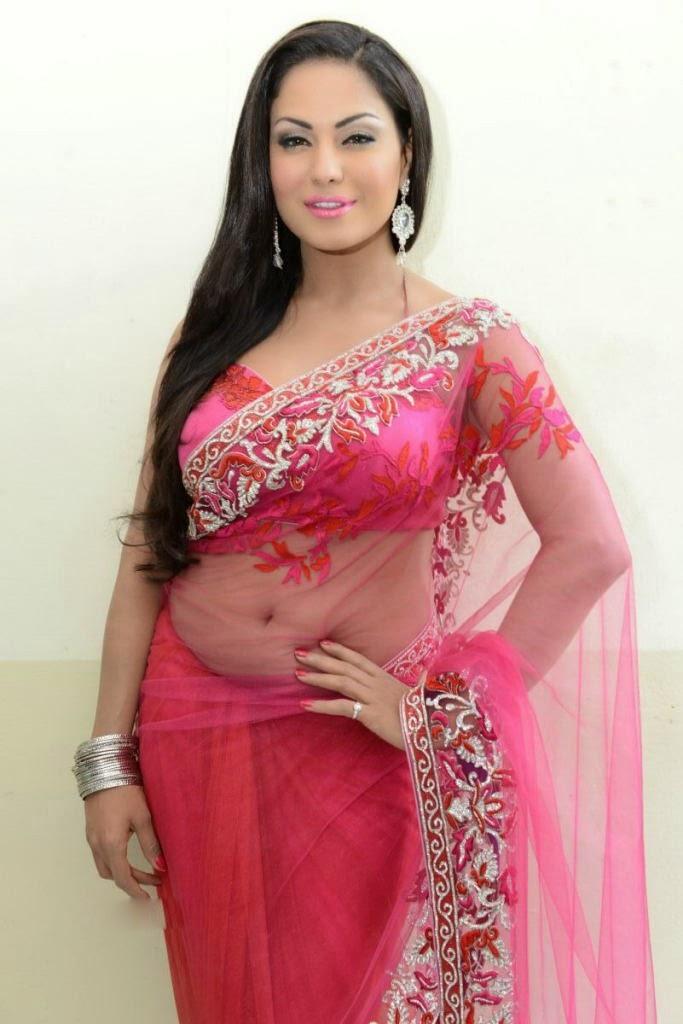 Pakistani Actress Veena Malik full Netted Saree with Machine Embroidery