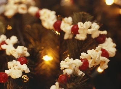 Popcorn and Cranberries
