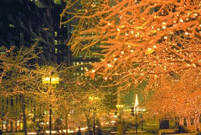 Multi colored light trees