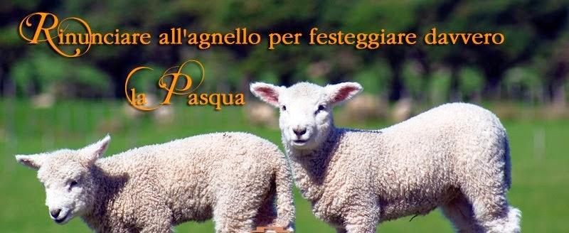 PASQUA 2014 - SALVIAMO LE CREATURE INNOCENTI!