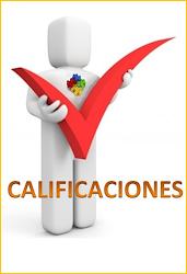 CALIFICACIONES DEL EXTRA