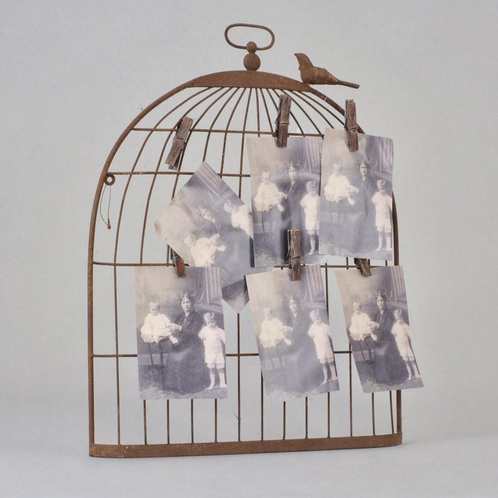 Fleurs et cages à oiseaux rouge Papier peint direct - Papier Peint Cage Oiseaux