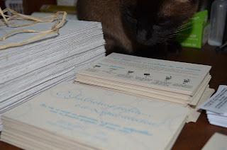 Convite Casamento reciclado - Gato acompanhando a montagem