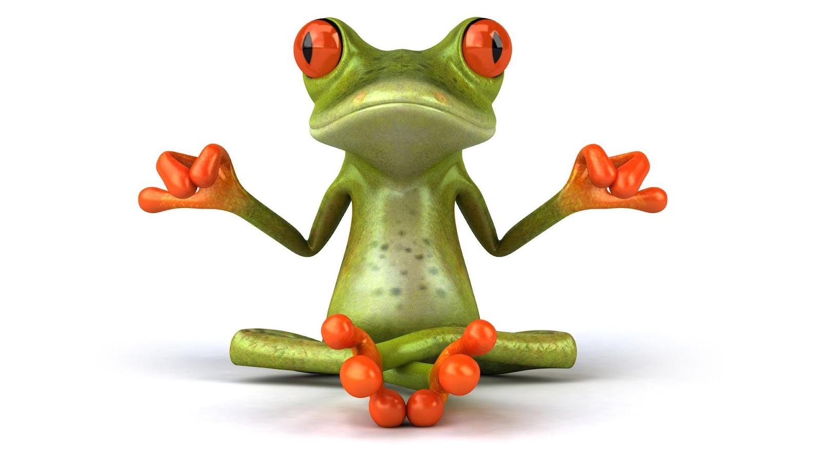 http://3.bp.blogspot.com/--2WINXP2Hi4/UB6BI-DMBeI/AAAAAAAAK5k/UiA5B9k861Y/s1600/animal-frog-3d-funny-1080x1920.jpg