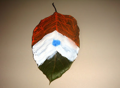Tricolor on leaf