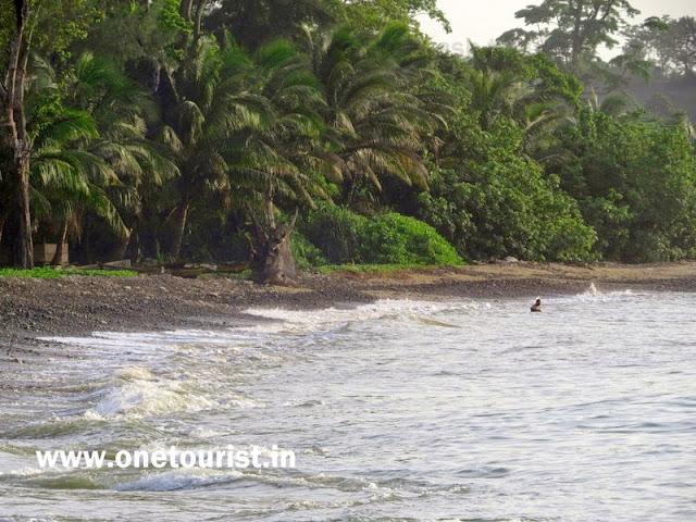 aamkunj beach rangat , andaman ,आमकुंज बीच , रंगत , अंडमान