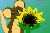 Wszędzie kwiaty