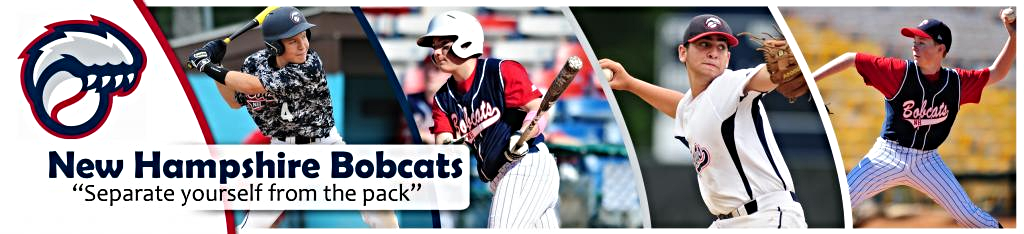 New Hampshire Bobcats Baseball