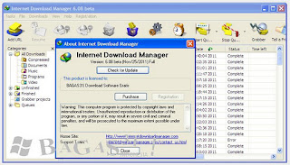 Internet Download Managet 6.08 Beta + Patch 2