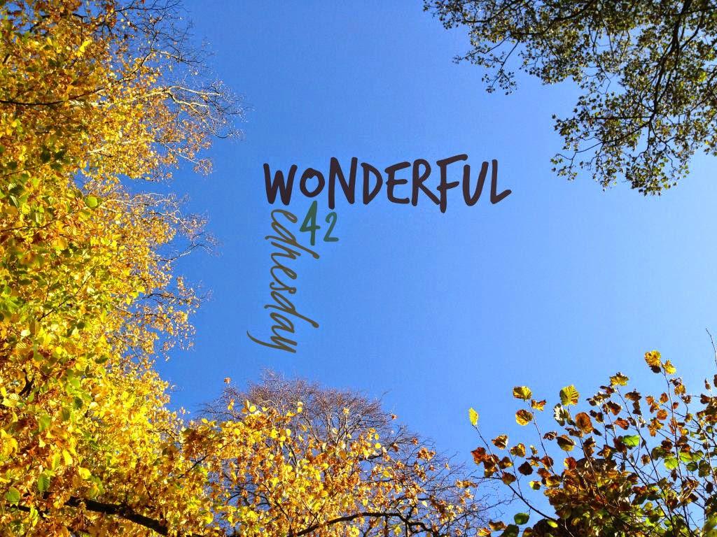 Wonderful Wednesday #42