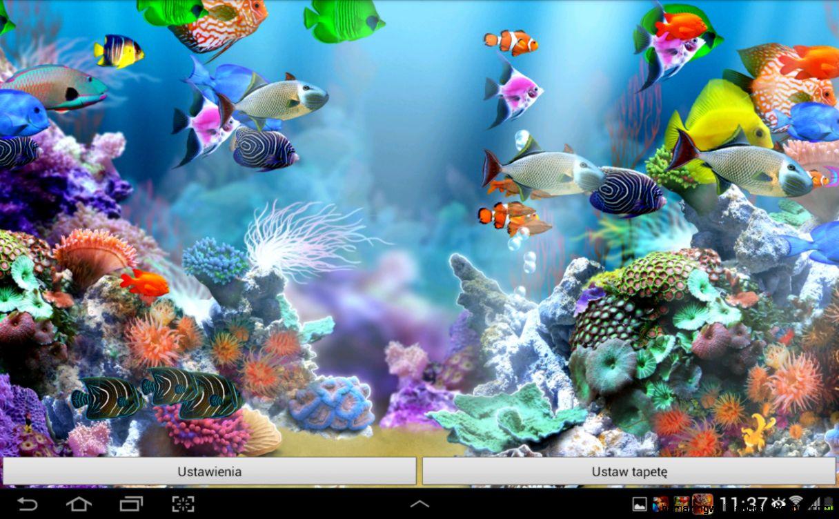 View Original Size Sim Aquarium Live Wallpaper Android Apps