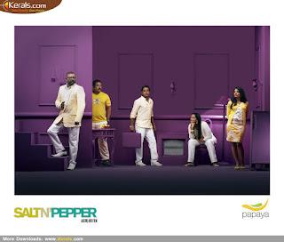 Malayalam Movie Salt N Pepper