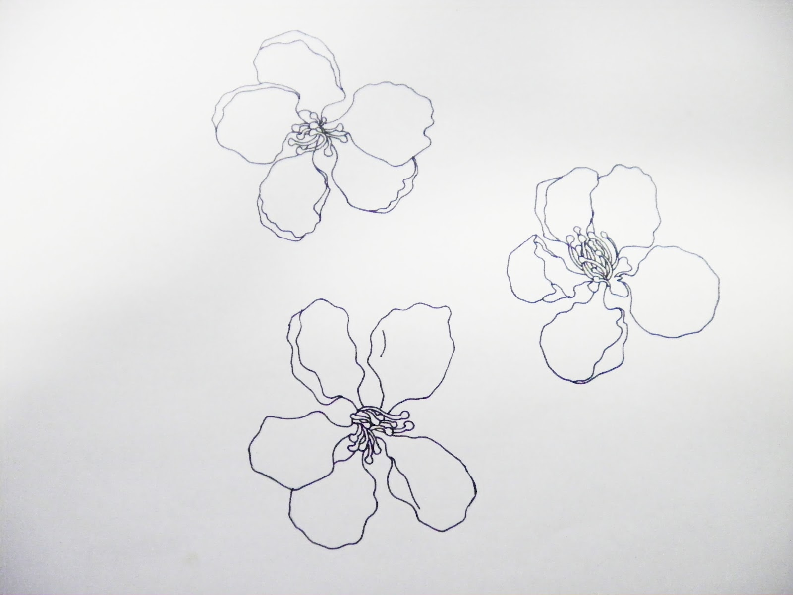 Single line drawing flowers : Textile bliss drawing and motif development