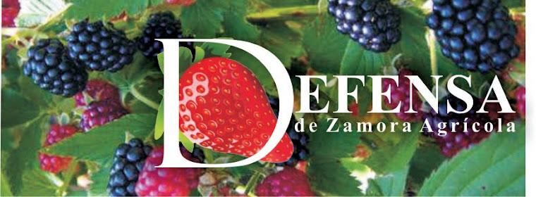 Defensa de Zamora Agrícola
