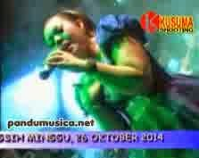 Download Album New Pallapa Live Arusbaya Madura 2014 MP3