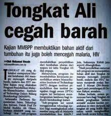 Herba Serbuk Tongkat Ali