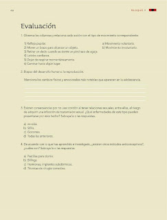 Apoyo Primaria Ciencias Naturales 6to Grado Bloque I Evaluación