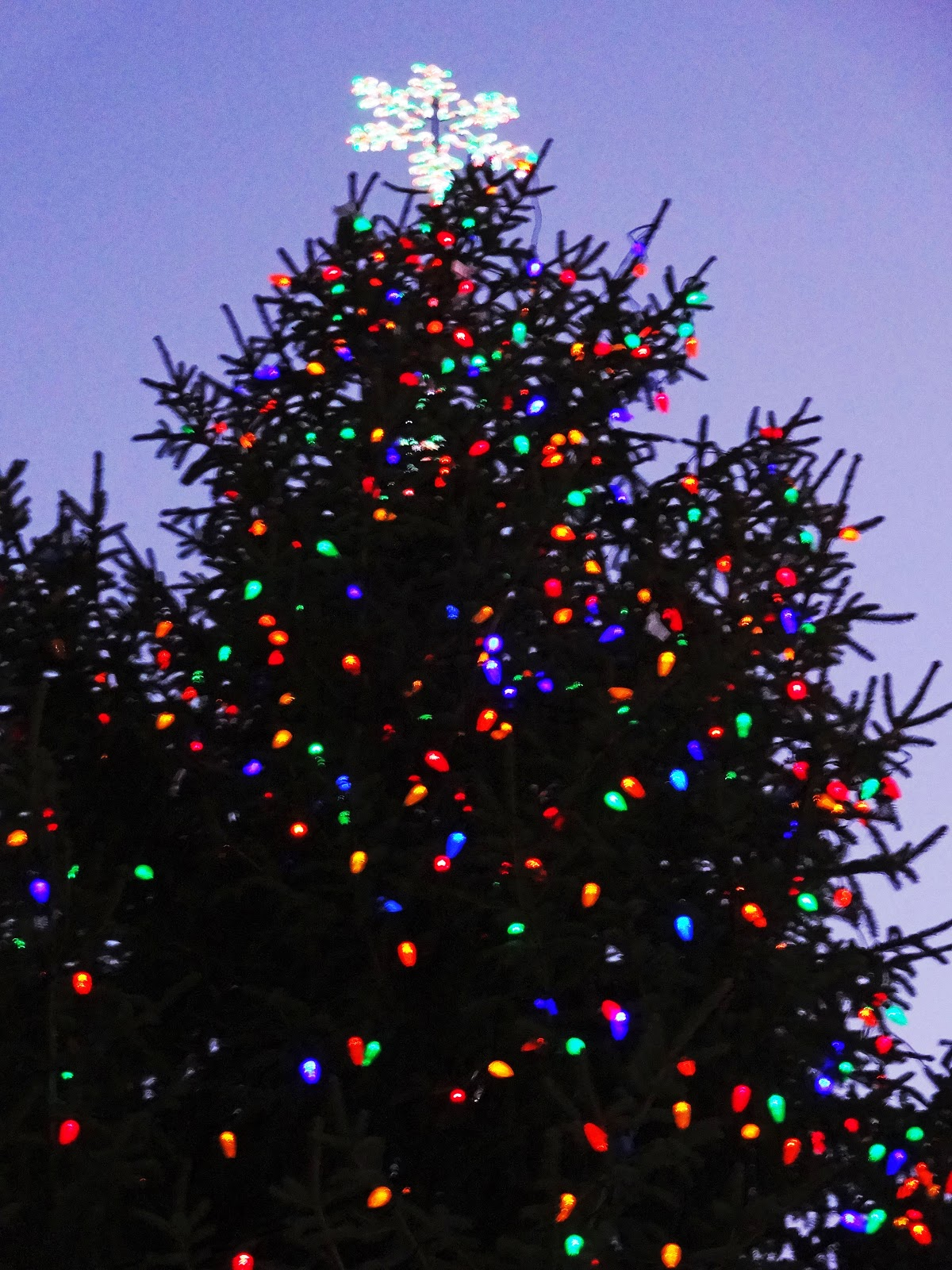 The star topper on the Boise City Tree. This weekend we\u0027re going to sip hot chocolate under the tree at the statehouse. It\u0027s a beautiful tree too.  sc 1 st  Boise Daily Photo & Boise Daily Photo: 2012