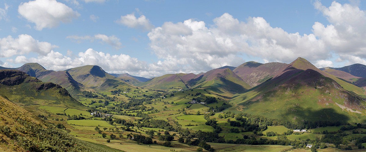 The Newlands Valley