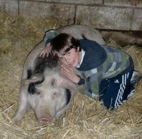 Flori hat Schwein