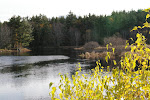 &#39;round here