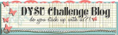 DYSU Challenge Blog