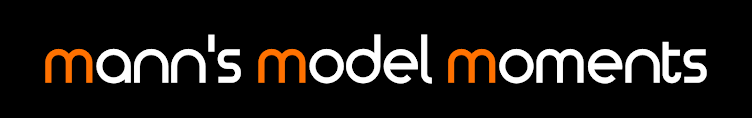 Mann's Model Moments