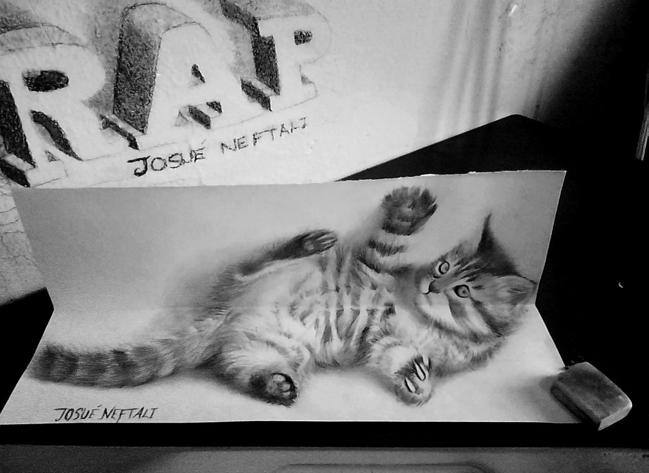 Dibujando en vivo - Página 2 Cat+drawing+3d