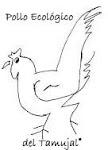 Pollos Ecológicos