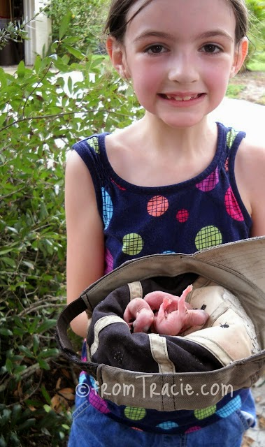 Katarina holding a hat full of baby squirrels