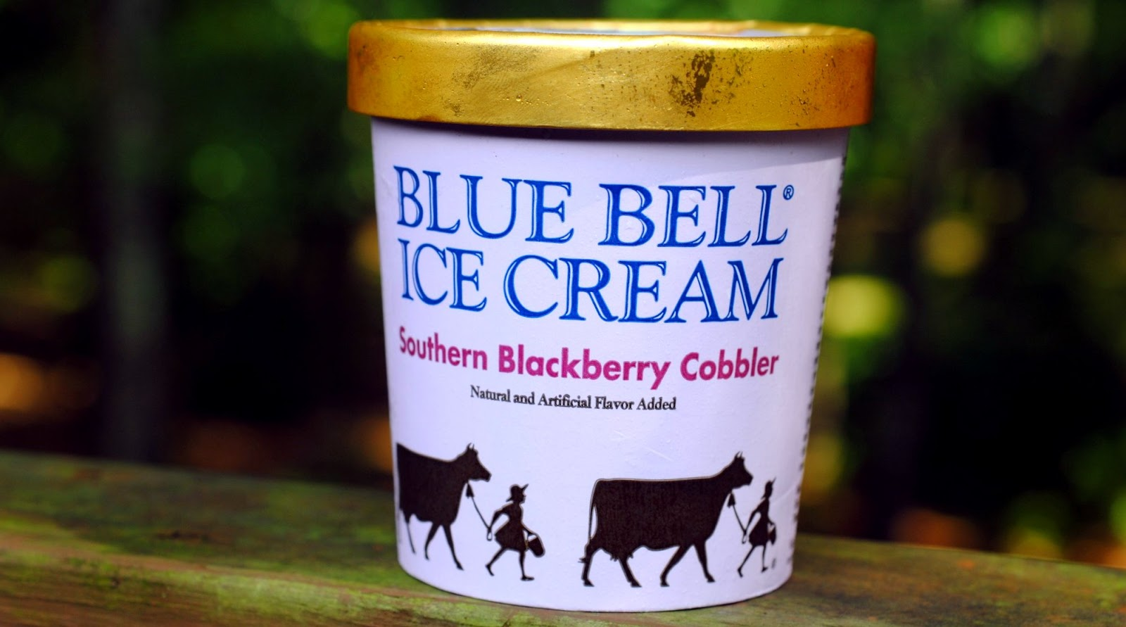 I scream for ice cream srk ice cream thread page 3 for Where can i find blue bell christmas cookie ice cream