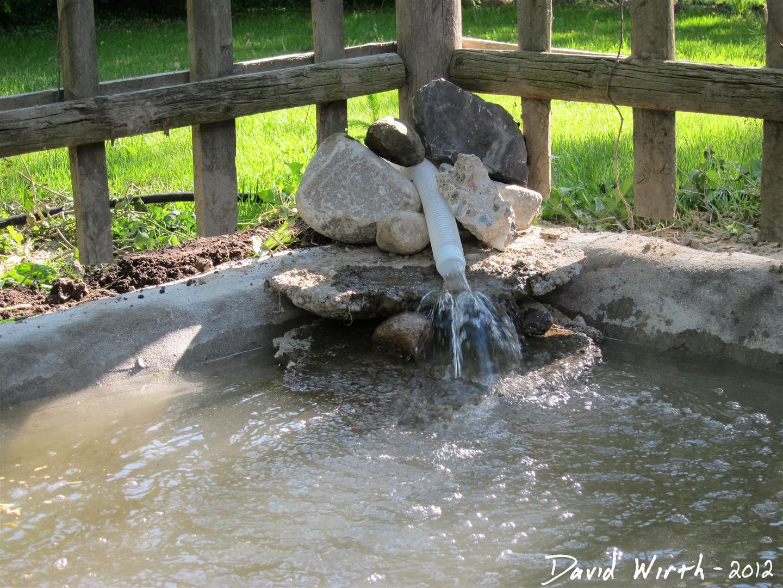 Backyard concrete pond for Simple koi pond