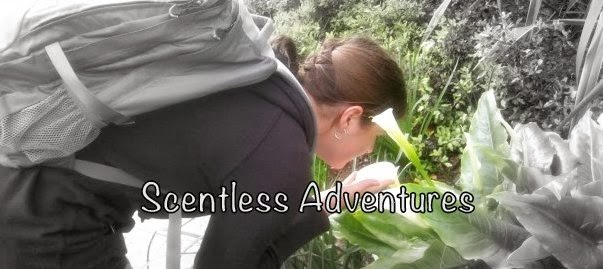 Scentless Adventures