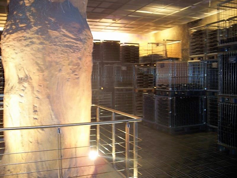 wine cellars of Ascheri winery