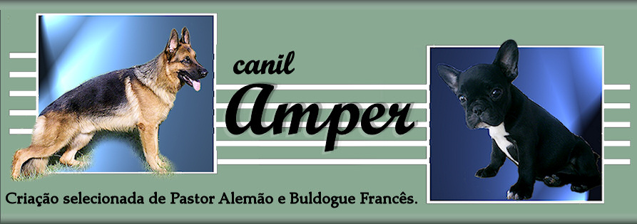 Canil Amper