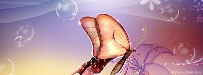 Capa para o Facebook borboleta