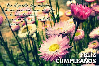 Tarjetas de Cumpleaños con Flores, parte 2